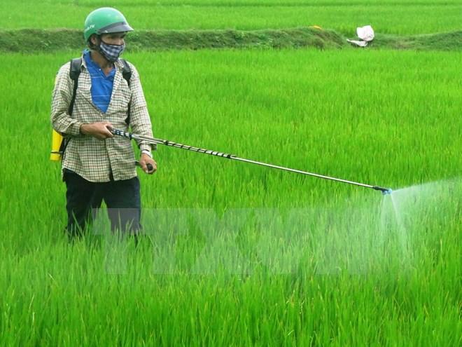 Kết quả hình ảnh cho Hướng dẫn sử dụng thuốc bảo vệ thực vật an toàn, hiệu quả, cụ thể