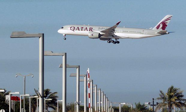 4 000 con bò sẽ 'bay' tới Qatar để tiếp tế sữa | baotintuc vn