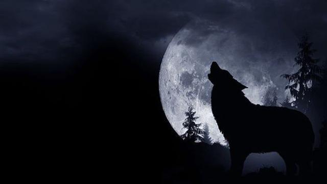 Đêm nay 20/1, Siêu trăng-Trăng máu-Trăng sói sẽ xuất hiện cùng lúc