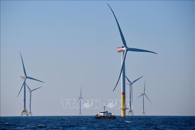 Kết quả hình ảnh cho Năng lượng tái tạo sẽ chiếm gần 50% sản lượng điện toàn cầu