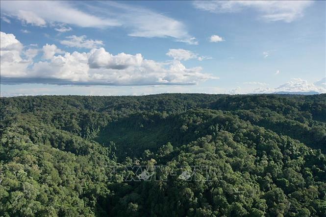 Cao nguyên Kon Hà Nừng – Khu dự trữ sinh quyển quý giá của thế giới