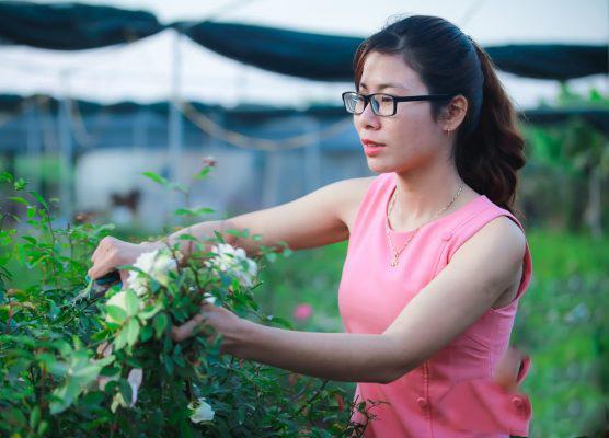 Trở thành nữ 'tỷ phú'' 9X nhờ khởi nghiệp với hoa hồng