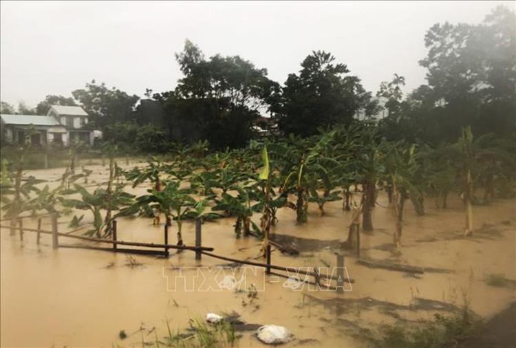 Lũ đặc biệt lớn trên sông Vu Gia, cảnh báo ngập lụt diện rộng