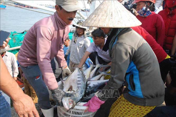 Ngu dan Quang Tri trung loc bien dau nam