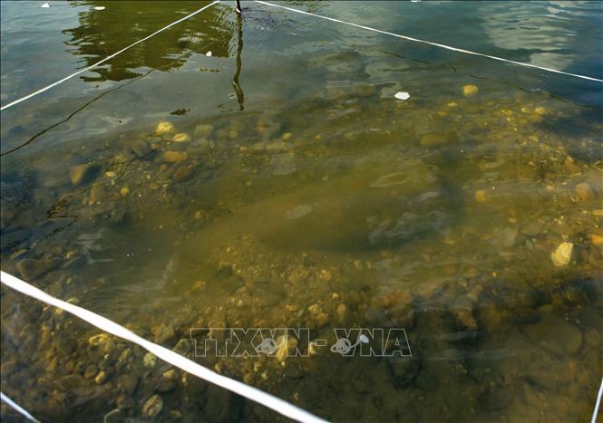 Quả bom nằm cách mặt nước khoảng 30cm.