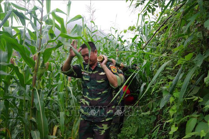 Bộ đội biên phòng Lào Cai đưa t.hi t.hể cụ bà Ma Thị D ra khỏi rừng. Ảnh TTXVN phát