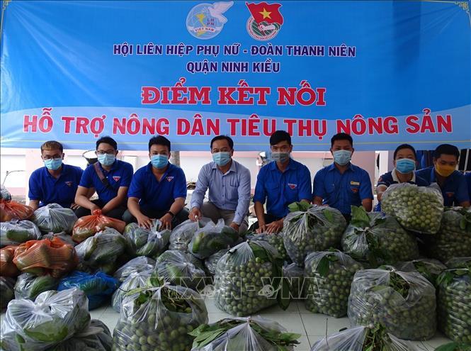 Đoàn Thanh niên TP Cần Thơ chung tay hỗ trợ nông dân tiêu thụ nông sản. Ảnh: Ánh Tuyết/TTXVN