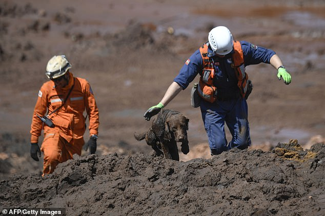 Nhân viên cứu hộ tìm thi thể nạn nhân. Ảnh: AFP
