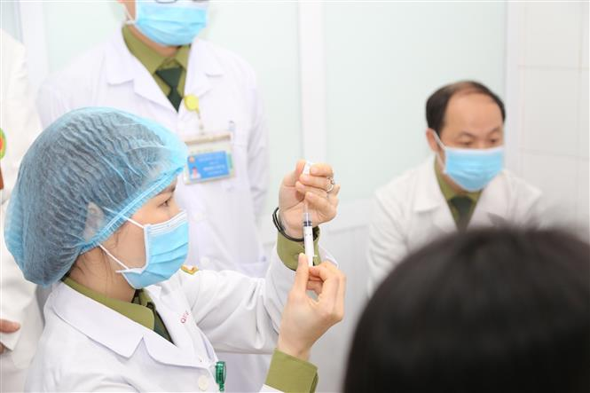 Phê duyệt vaccine COVID-19 đầu tiên cho nhu cầu cấp bách trong phòng, chống  dịch | baotintuc.vn