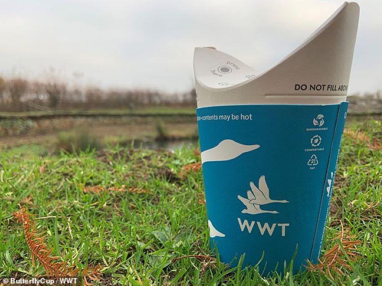 'Cốc giấy không nhựa' dùng một lần, phân hủy hoàn toàn trong đất