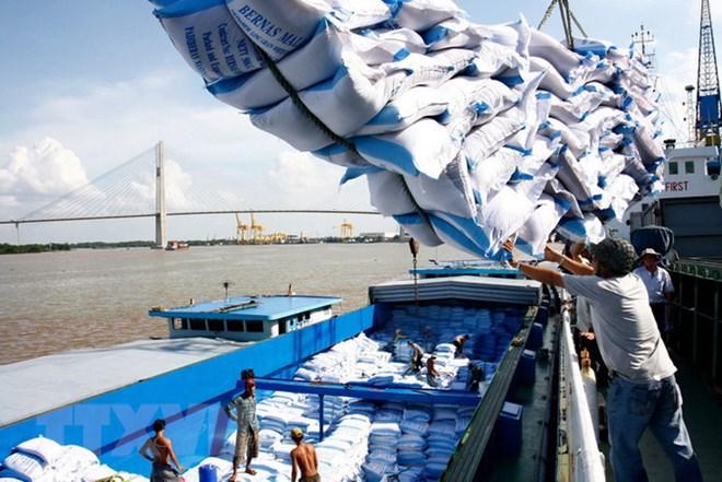 Kết quả hình ảnh cho xuất khẩu gạo