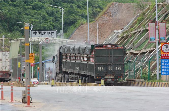 Tạo điều kiện thuận lợi nhất cho xuất khẩu vải quả tươi | baotintuc.vn