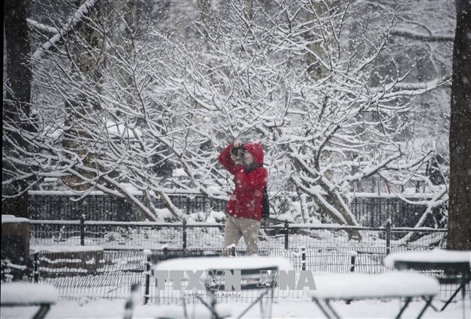 Kết quả hình ảnh cho Bão tuyết đổ vào Đông Nam nước Mỹ, 3 người thiệt mạng