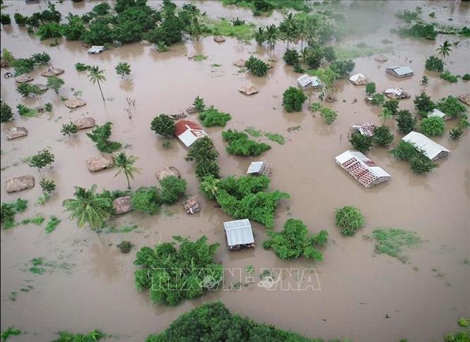 Nguy cơ ''đợt tàn phá thứ hai'' sau bão Idai tại châu Phi