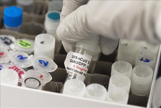 EMA giám sát nghiên cứu, lưu hành vaccine ngừa COVID-19