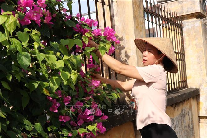 Hiệu quả từ mô hình ''Khu dân cư không rác thải'' của phụ nữ Bắc Ninh