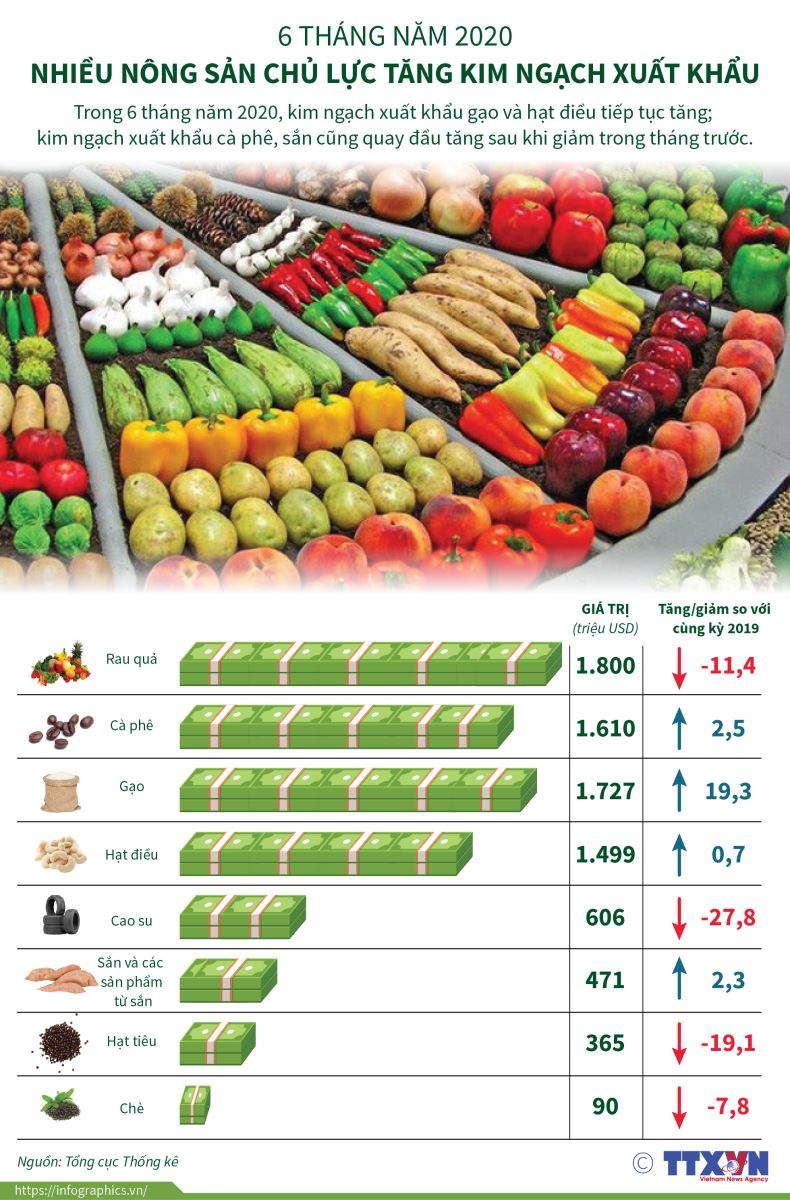 infographic  nhieu nong san chu luc tang kim ngach xuat khau