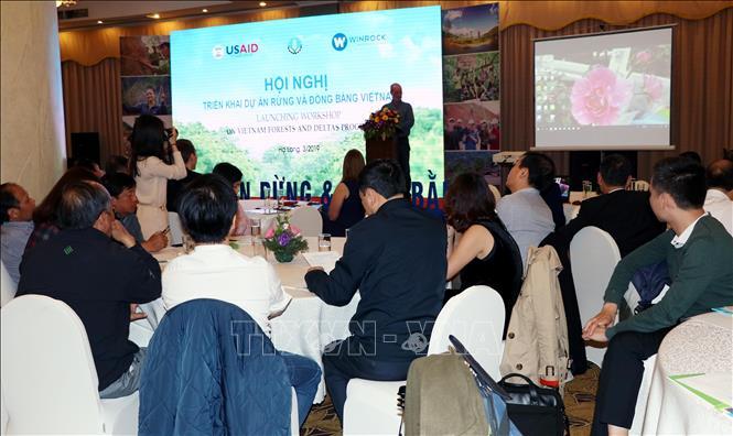 Triển khai dự án Rừng và Đồng bằng Việt Nam giai đoạn 3