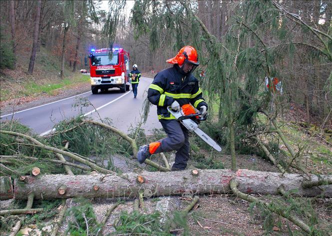 Siêu bão Ciara cướp đi sinh mạng của 7 người tại châu Âu
