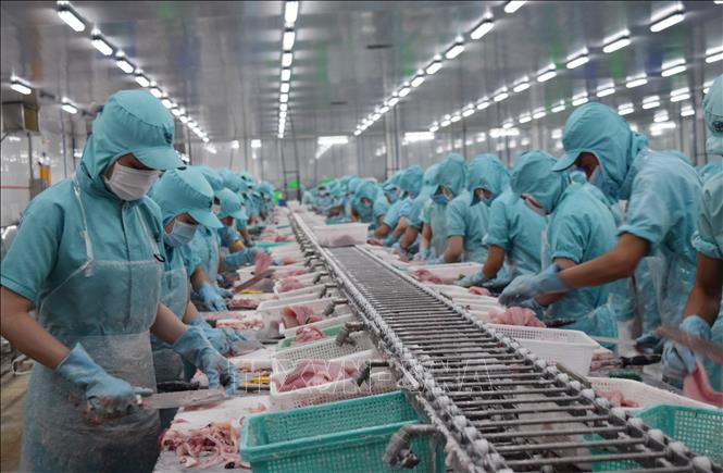 Công bố 268 doanh nghiệp xuất khẩu uy tín năm 2019 | baotintuc.vn